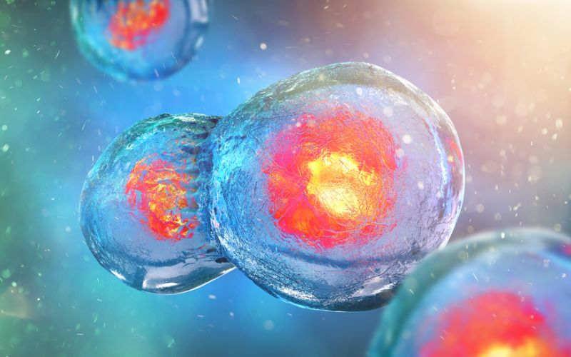 Które nowotwory są dziedziczne i występują rodzinnie – poradnik