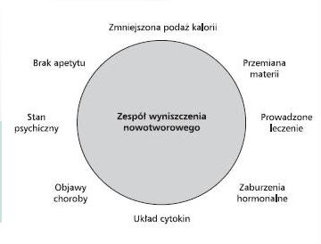 glodówka w raku