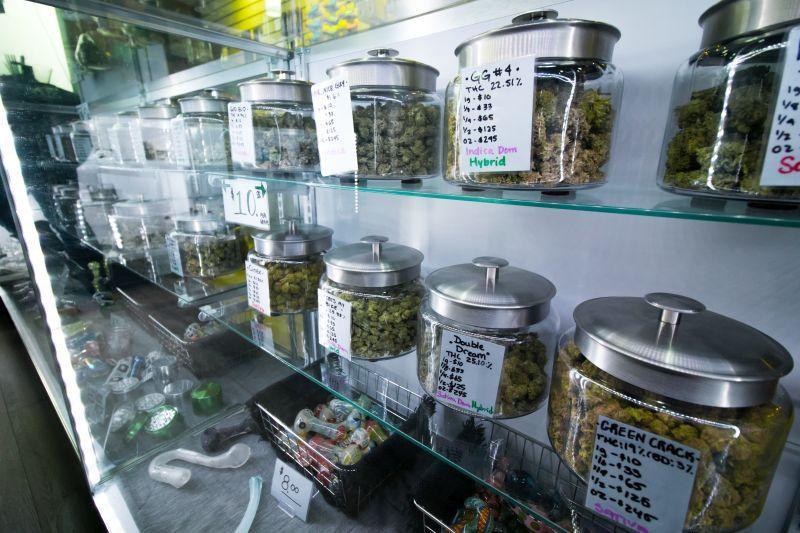 medyczna marihuana w onkologii