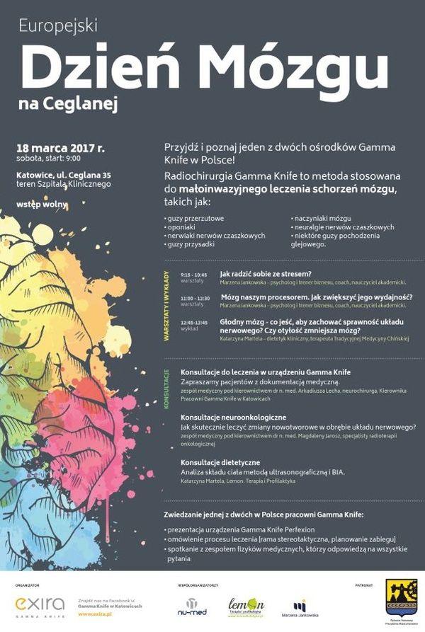 Europejski Dzień Mózgu, Katowice