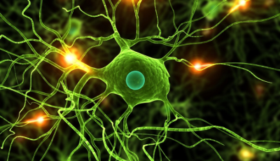 polineuropatia nowotworowa uszkodzenie nerwów