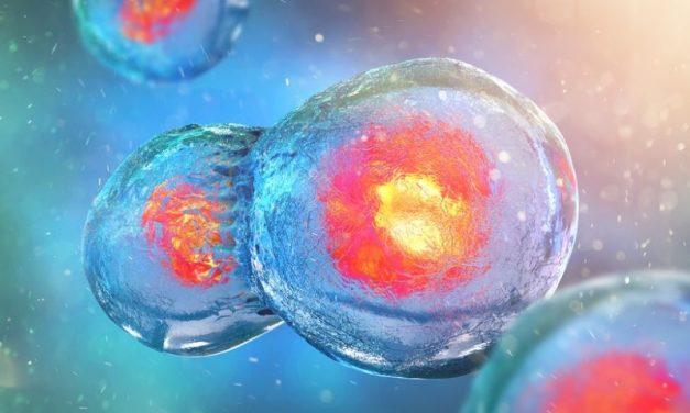 Serwis immuno-onkologia.pl – nowa strategia leczenia nowotworów