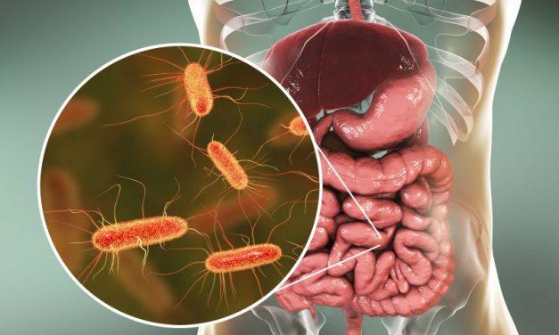 Mikroflora jelitowa (mikrobiom) w profilaktyce raka