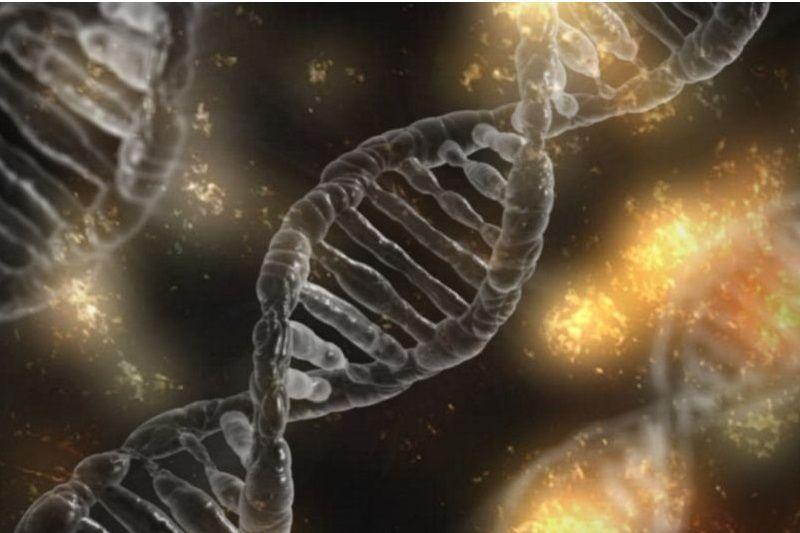 Kancerogeneza – etapy i przebieg